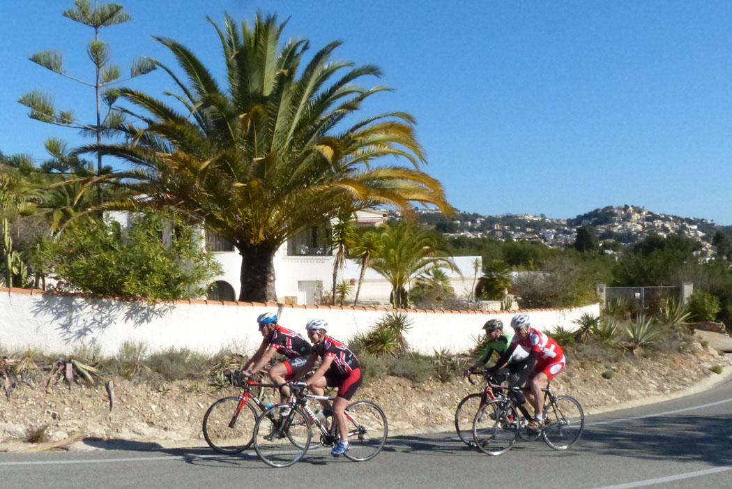 Vorbei an Palmen geht`s für die Fitnessgruppe von Bill auf der Panoramastrasse nach Benimarco