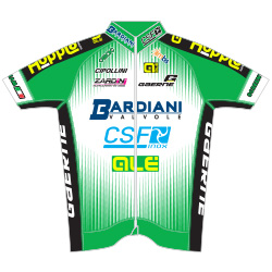 Trikot Bardiani CSF (BAR) 2016 (Bild: UCI)