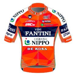 Trikot Nippo – Vini Fantini (NIP) 2017 (Bild: UCI)