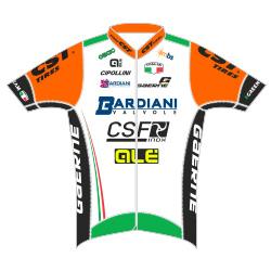 Trikot Bardiani CSF (BRD) 2017 (Bild: UCI)