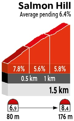 Höhenprofil Straßen-Weltmeisterschaft 2017 - Straßenrennen Männer U23, Salmon Hill