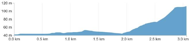 Höhenprofil Coppa Sabatini - Gran Premio città di Peccioli 2017, letzte 3 km