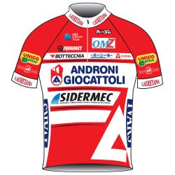 Trikot Androni Giocattoli - Sidermec (ANS) 2019 (Quelle: UCI)