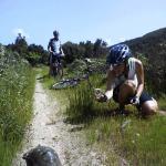 Sardinien mit Haut, Haar und Schildkröte erleben