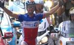 Der französische Meister Thomas Voeckler gewinnt dei 15. Etappe der Tour de France (www.letour.fr)