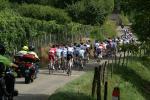 Tour de l`Ain - 1. Etappe - das Hauptfeld am Anstieg zum Col de Fay