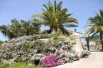 Blütenpracht an der Costa Blanca - hier in Tarbena
