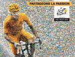 Cofis Cycling Cosmos (8) - Die Tour de France 2015