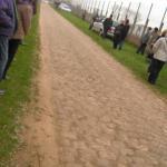 Kopfsteinpflaster bei Paris-Roubaix