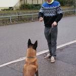 """Pierre und Hund Juri - """"Ich brauche etwas, das mich verlangsamt"""""""