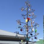 so sehen die Weihnachtsbäume in Südafrika aus